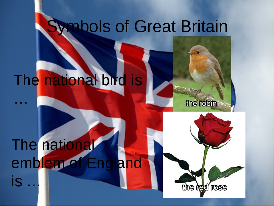 Symbols of Great Britain The national bird is … The national emblem of Englan...