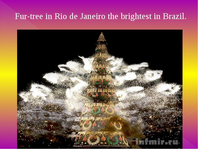 Fur-tree - a symbol of Christmas on France.