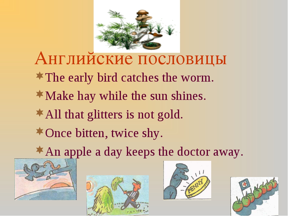 Английские пословицы The early bird catches the worm. Make hay while the sun...