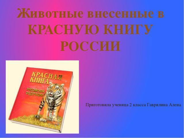Животные внесенные в КРАСНУЮ КНИГУ РОССИИ Приготовила ученица 2 класса Гаврил...