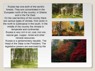 Russia has one-sixth of the world's forests. They are concentrated in the Eur