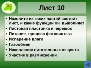 Лист 40 Чем отличаются простые и сложные листья? Назовите формы сложных листь