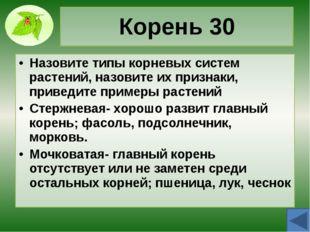 Корень 50 Назовите видоизменения корней, опишите их, приведите примеры растен