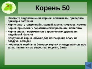 Побег 30 Дайте определение вегетативным и генеративным побегам. Побег предста