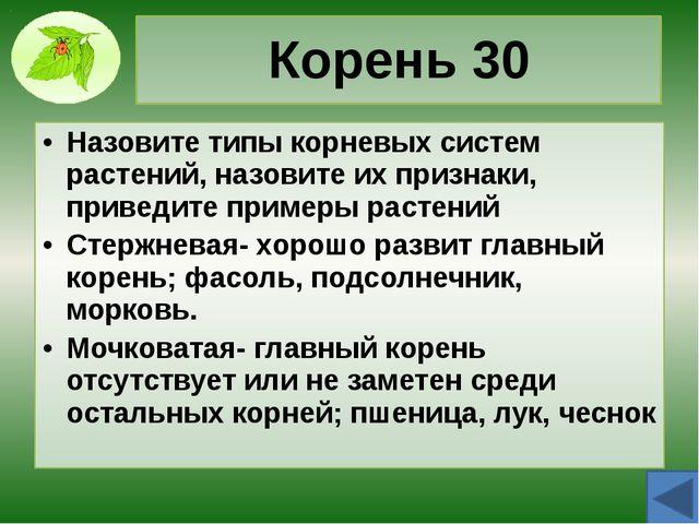 Корень 50 Назовите видоизменения корней, опишите их, приведите примеры растен...