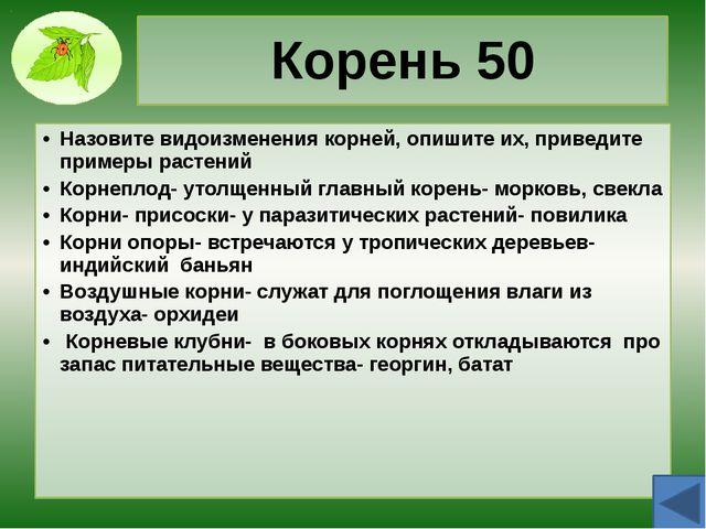 Побег 30 Дайте определение вегетативным и генеративным побегам. Побег предста...