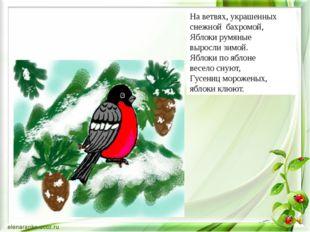 На ветвях, украшенных снежной бахромой, Яблоки румяные выросли зимой. Яблоки