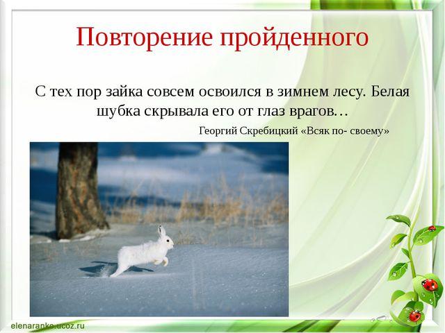С тех пор зайка совсем освоился в зимнем лесу. Белая шубка скрывала его от г...