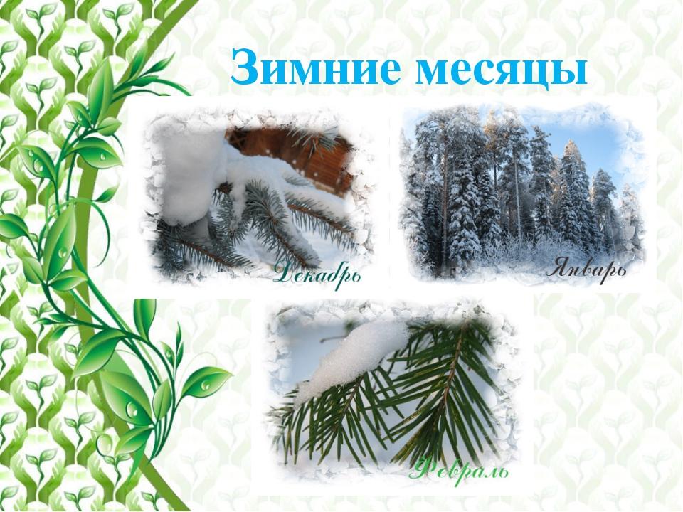 Зимние месяцы