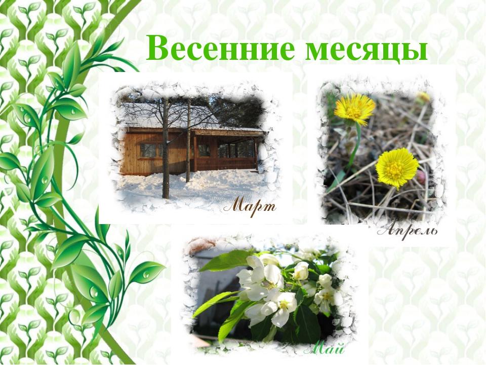 Весенние месяцы