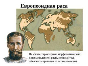 Европеоидная раса Назовите характерные морфологические признаки данной расы,