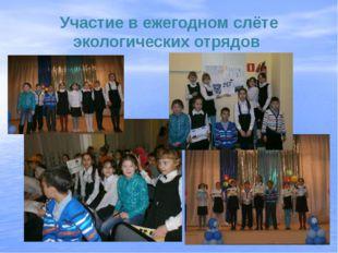 Участие в ежегодном слёте экологических отрядов