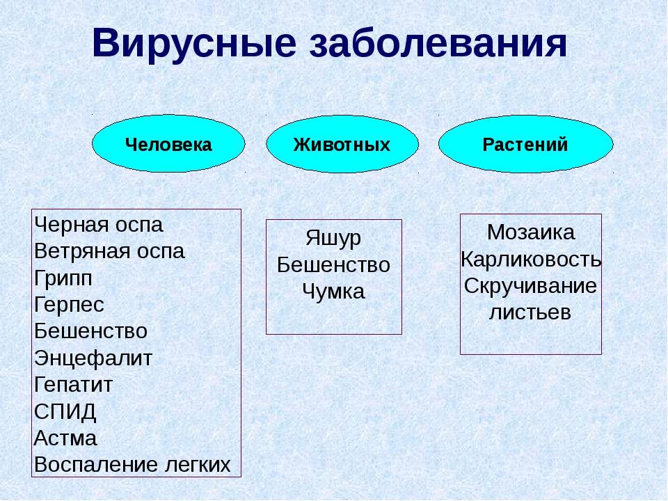 ? Наука, изучающая вирусы называется - б) эпидемиология в) вирусология