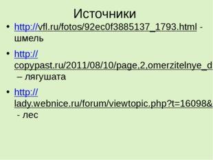 Источники http://vfl.ru/fotos/92ec0f3885137_1793.html - шмель http://copypast