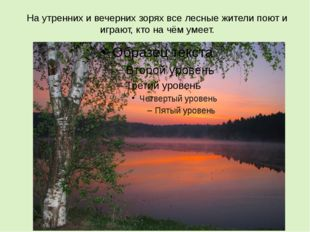На утренних и вечерних зорях все лесные жители поют и играют, кто на чём умеет.