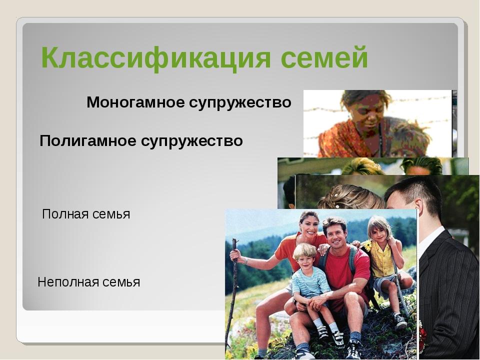 Моногамное супружество Полигамное супружество Полная семья Неполная семья Кл...