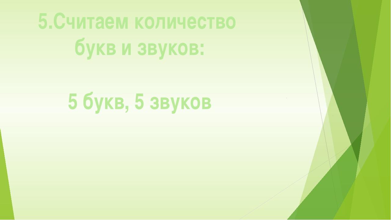 5.Считаем количество букв и звуков: 5 букв, 5 звуков