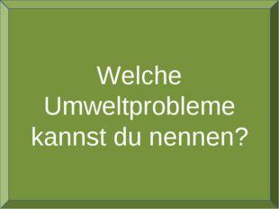 Welche Umweltprobleme kannst du nennen?