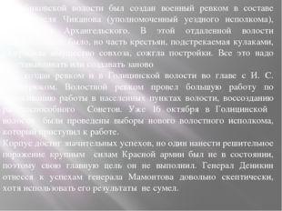 В Бибиковской волости был создан военный ревком в составе председателя Чикано