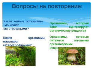 Вопросы на повторение: Какие живые организмы называют автотрофными? Какие орг