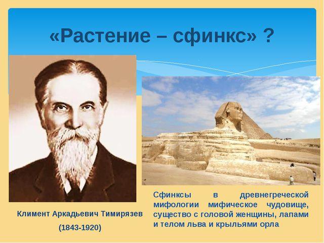 Климент Аркадьевич Тимирязев (1843-1920) «Растение – сфинкс» ? Сфинксы в дре...