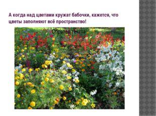 А когда над цветами кружат бабочки, кажется, что цветы заполняют всё простран