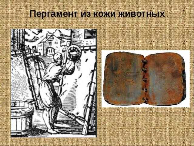 Пергамент из кожи животных