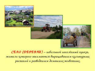 Село СЕЛО (ДЕРЕВНЯ) – небольшой населённый пункт, жители которого занимаются