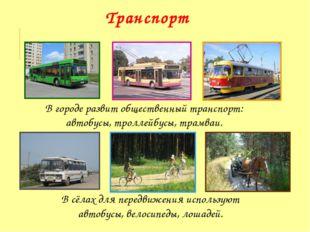 В городе развит общественный транспорт: автобусы, троллейбусы, трамваи. В сёл