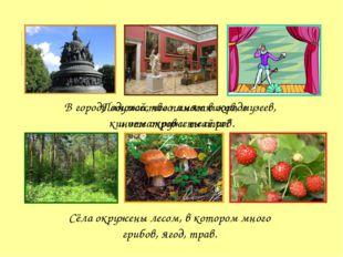 В городе множество памятников, музеев, кинотеатров и театров. Сёла окружены л