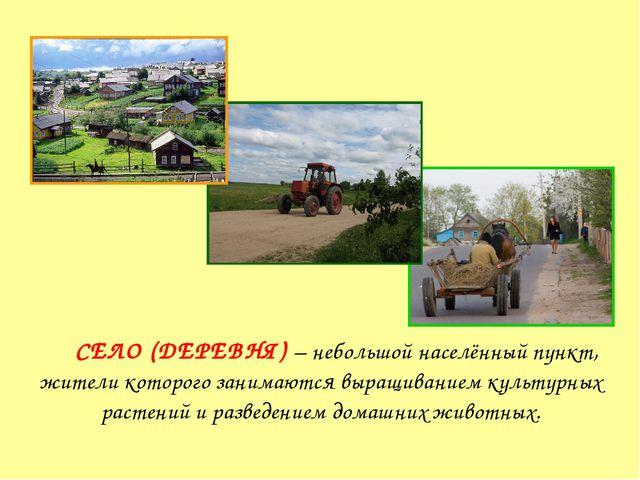 Село СЕЛО (ДЕРЕВНЯ) – небольшой населённый пункт, жители которого занимаются...