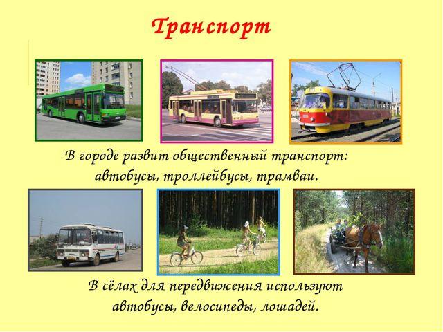 В городе развит общественный транспорт: автобусы, троллейбусы, трамваи. В сёл...