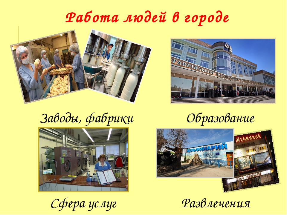 Заводы, фабрики Образование Развлечения Сфера услуг Работа людей в городе