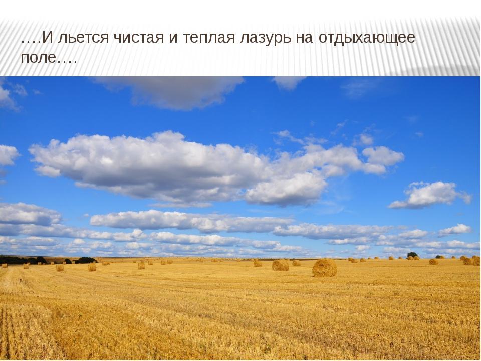 ….И льется чистая и теплая лазурь на отдыхающее поле….
