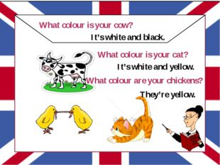 """"" What colour is your cow? It's white and black. What colour is your cat? I"