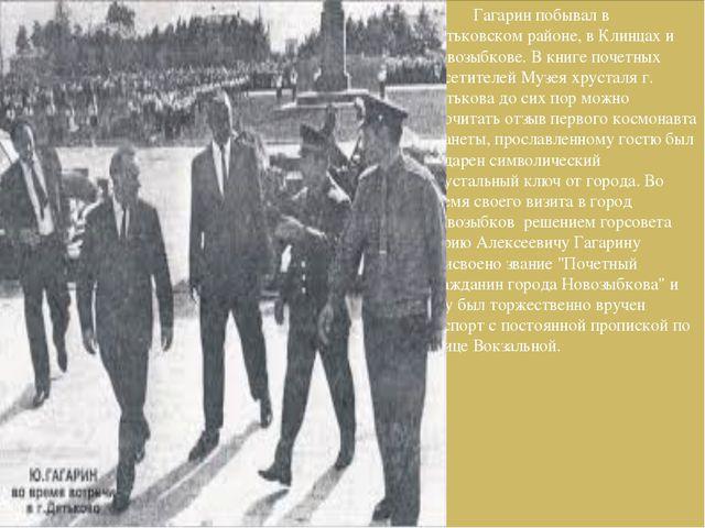 Гагарин побывал в Дятьковском районе, в Клинцах и Новозыбкове. В книге почет...