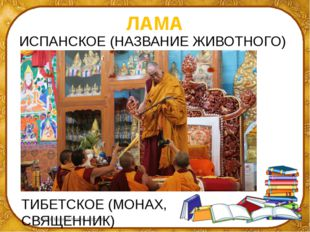 ЛАМА ИСПАНСКОЕ (НАЗВАНИЕ ЖИВОТНОГО) ТИБЕТСКОЕ (МОНАХ, СВЯЩЕННИК) ©Ольга Миха