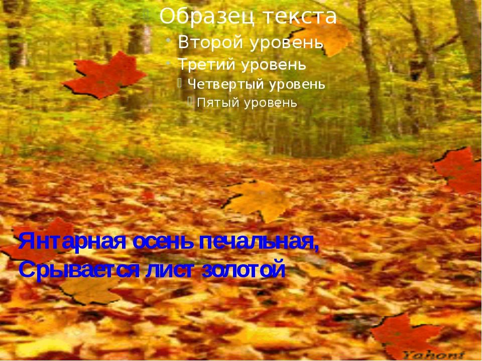 Янтарная осень печальная, Срывается лист золотой