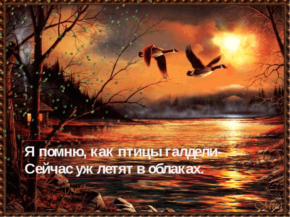 Я помню, как птицы галдели- Сейчас уж летят в облаках.