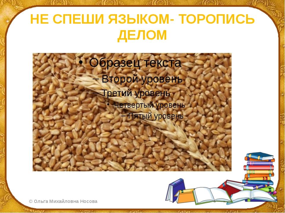 НЕ СПЕШИ ЯЗЫКОМ- ТОРОПИСЬ ДЕЛОМ ©Ольга Михайловна Носова
