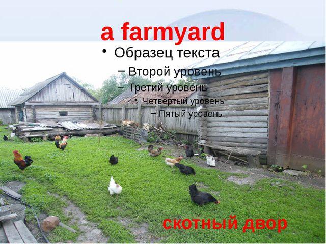 a farmyard скотный двор
