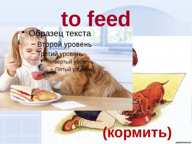 to feed (кормить)