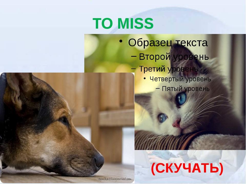TO MISS (СКУЧАТЬ)