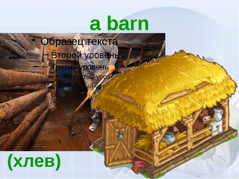 a barn (хлев)