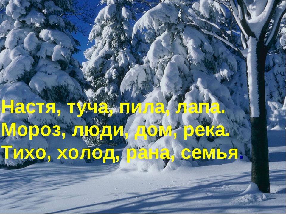 Настя, туча, пила, лапа. Мороз, люди, дом, река. Тихо, холод, рана, семья.