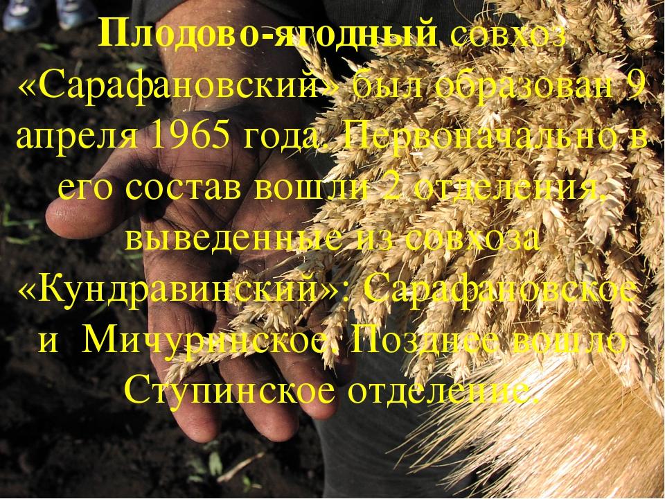 Плодово-ягодный совхоз «Сарафановский» был образован 9 апреля 1965 года. Перв...