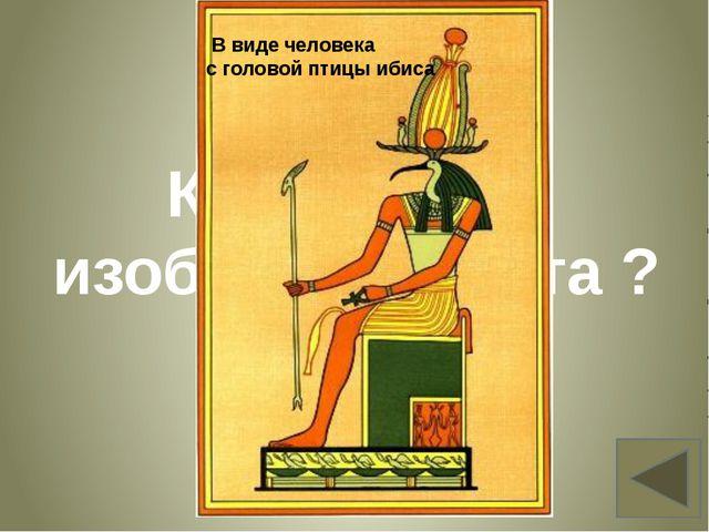 Как писали египтяне? Вопрос 12 иероглифами