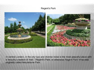 Regent's Park In central London, in the city fuss and diverse noise is the m