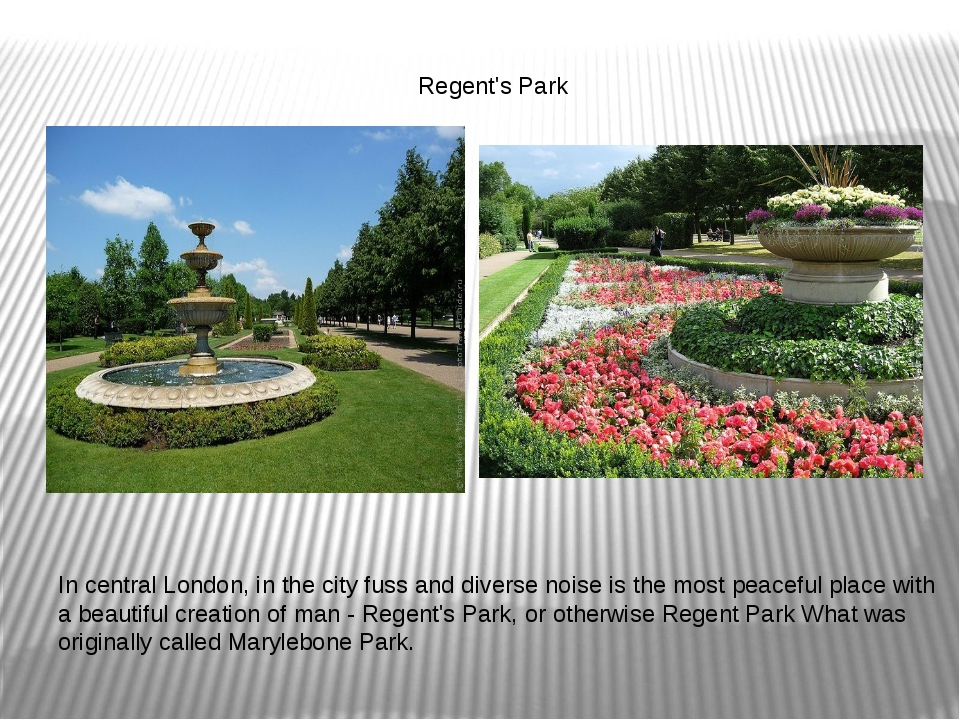 Regent's Park In central London, in the city fuss and diverse noise is the m...