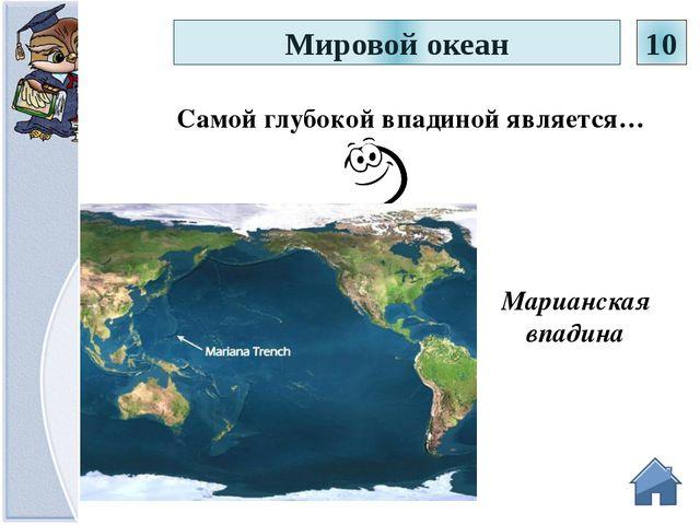 Всем известно, что Магелланов пролив разделяет Южную Америку и остров Огненн...